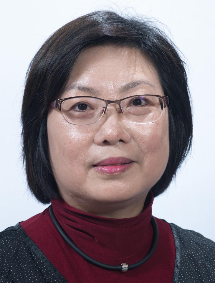 林惠娟 副會長